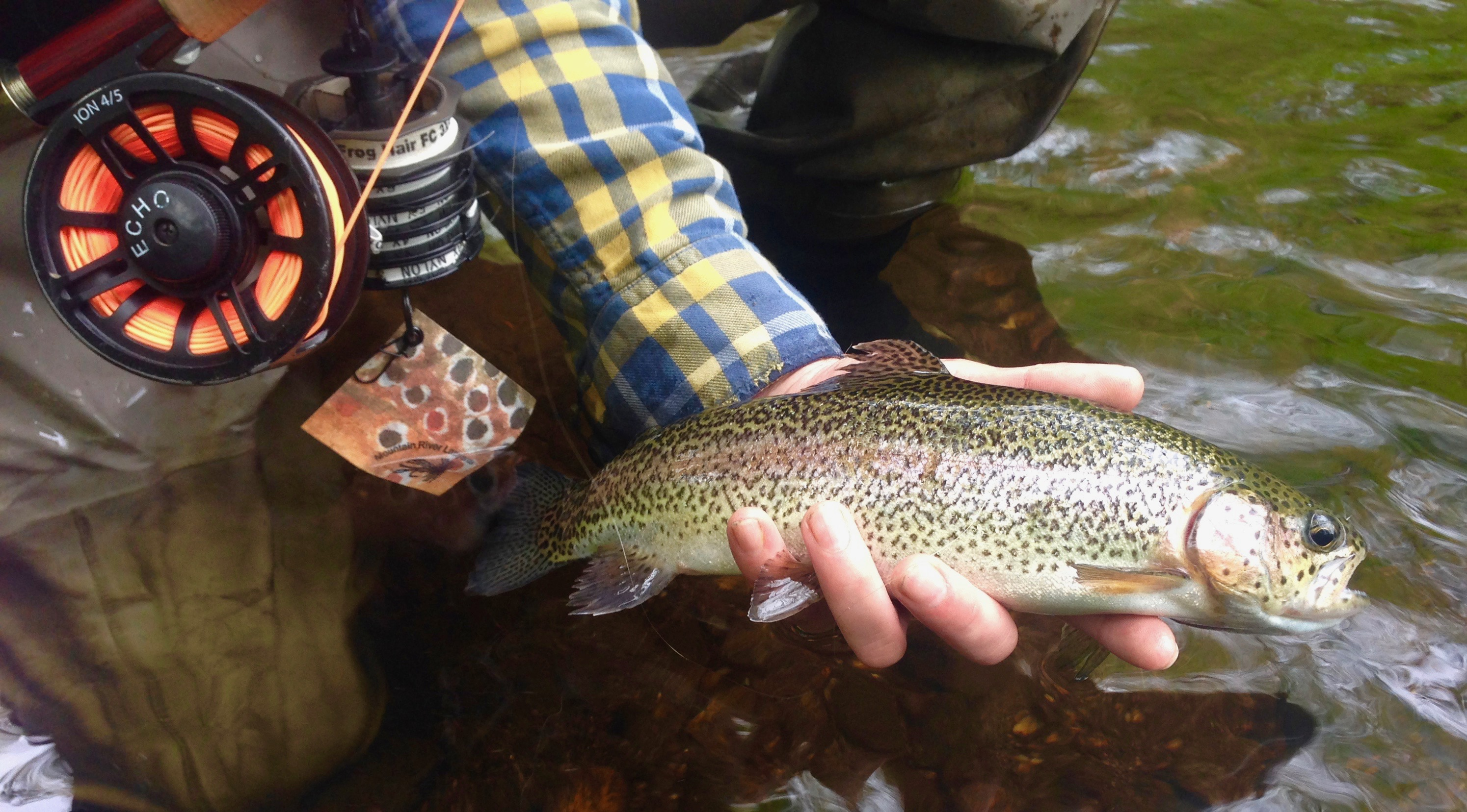 Fly Fishing Connecticut – New England Trout